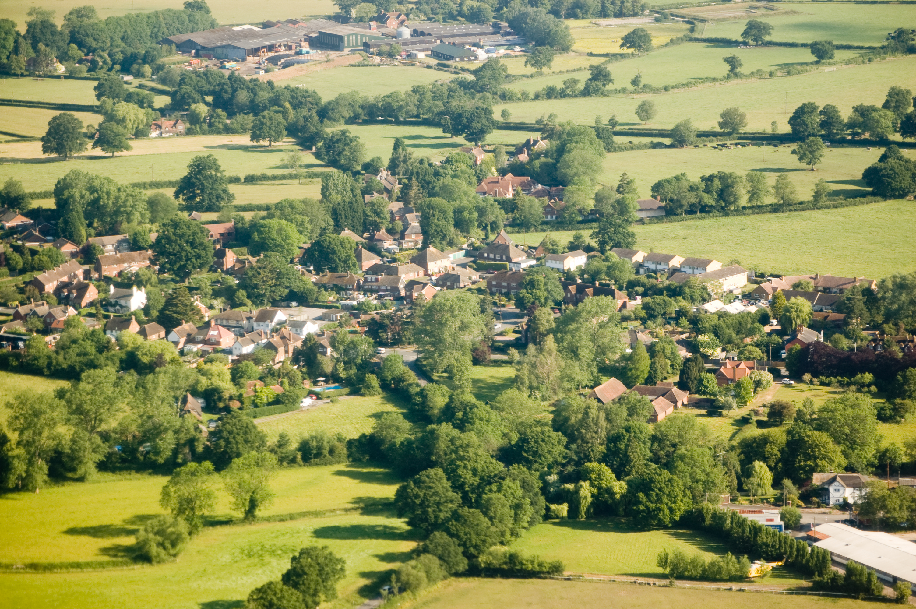 Trees of Surrey Aerial shot